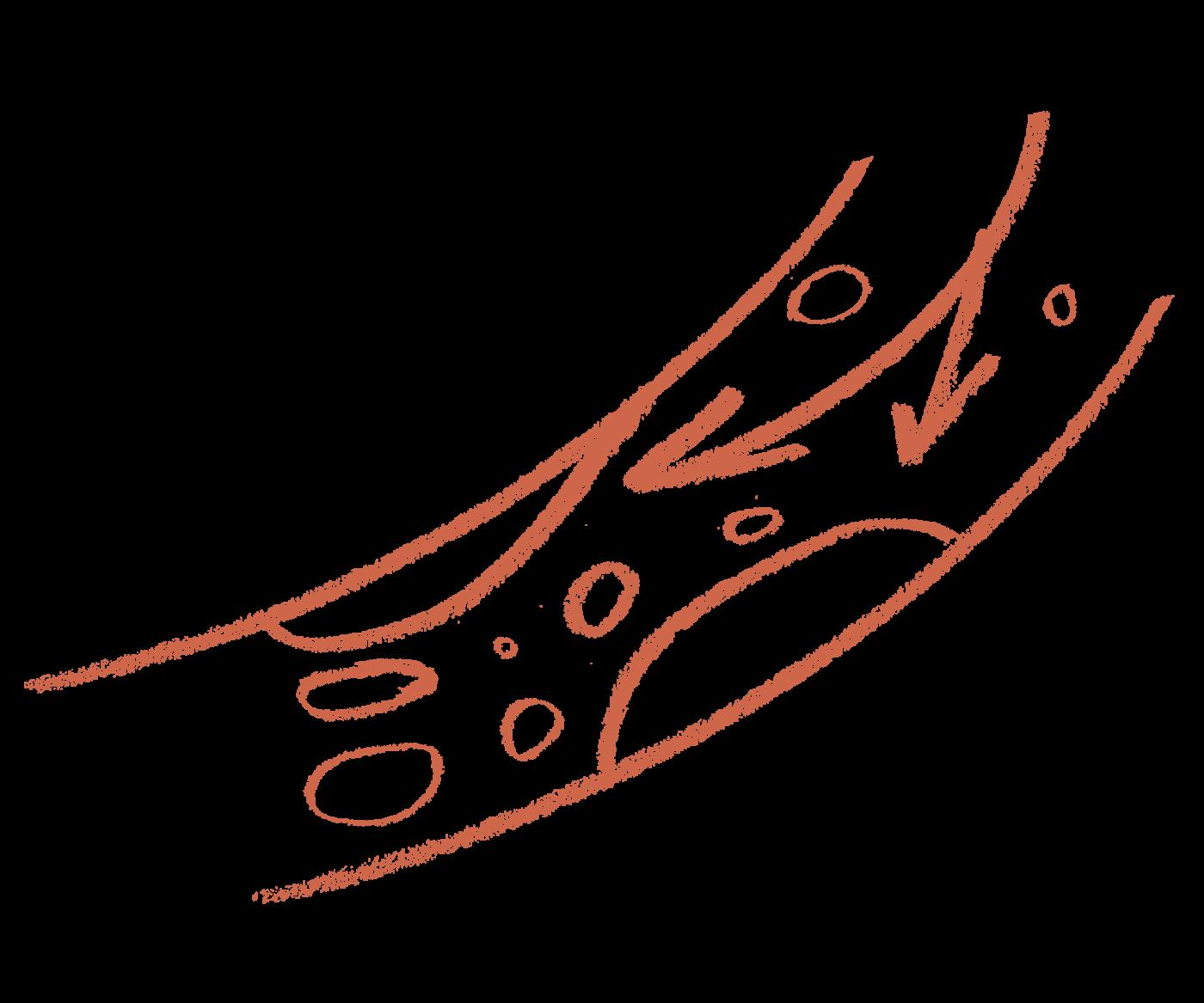 Кардиоорганик Коэнзим - источник активного долголетия
